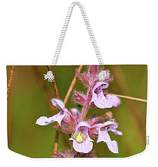 Weekender Tote Bag featuring the photograph Yellow Spider  by Ann E Robson