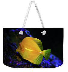 Weekender Tote Bag featuring the photograph Yellow Tang by Anthony Jones