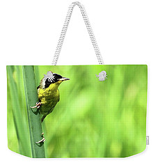 Yellow Throat Weekender Tote Bag