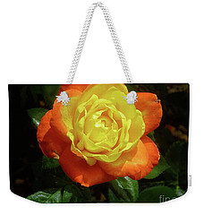 Yellow Red Rose Flower. Weekender Tote Bag