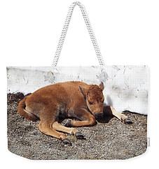 Yellowstone Bison Calf  Weekender Tote Bag