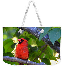 Weekender Tote Bag featuring the photograph Yes I'm Listening by Betty-Anne McDonald