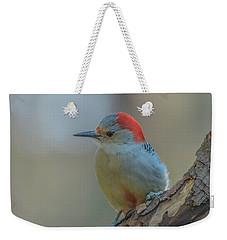 Young Red Bellied Woodpecker Weekender Tote Bag