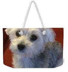 Yorkshire Terrier Weekender Tote Bag by Robin Regan