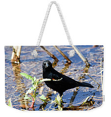 Weekender Tote Bag featuring the photograph You Looking At Me by Gary Wightman