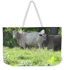 Weekender Tote Bag featuring the photograph You Looking At Us by Aaron Martens