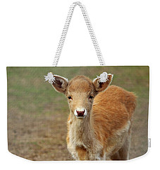 Young And Sweet Weekender Tote Bag