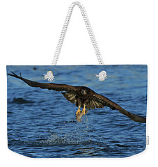 Weekender Tote Bag featuring the photograph Young Bald Eagle Catching Fish by Coby Cooper