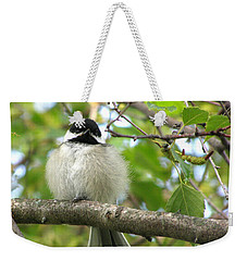 Weekender Tote Bag featuring the photograph Young Black-capped Chickadee by Angie Rea