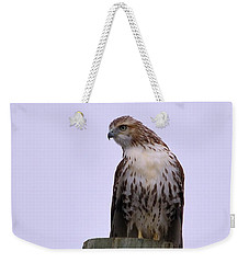 Looking For Lunch Weekender Tote Bag by Kathy Eickenberg