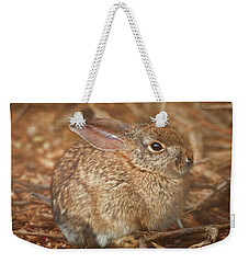 Young Cottontail In The Morning Weekender Tote Bag