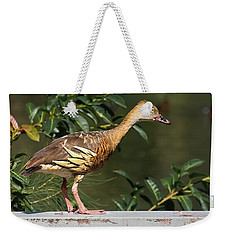 Young Duck Weekender Tote Bag