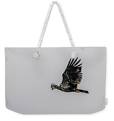 Young Eagle In Flight 07 Weekender Tote Bag by Timothy Latta