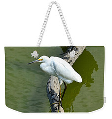 Young Egret Resting Weekender Tote Bag by Kathy Eickenberg
