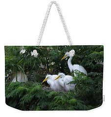 Young Egrets Fledgling And Waiting For Food-digitart Weekender Tote Bag