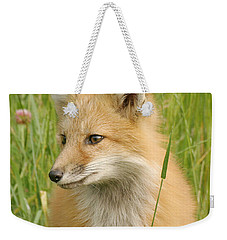 Weekender Tote Bag featuring the photograph Young Fox by Doris Potter