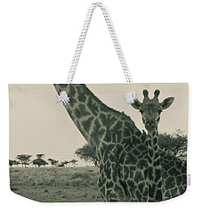 Young Giraffe With Mom In Sepia Weekender Tote Bag by Darcy Michaelchuk