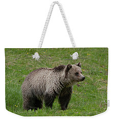 Young Grizzly Weekender Tote Bag