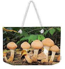 Young Honey Mushrooms Weekender Tote Bag