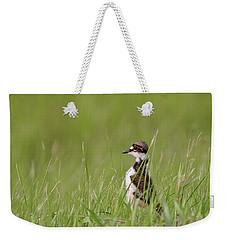 Young Killdeer In Grass Weekender Tote Bag