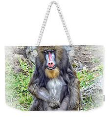 Young Mandrill Fade To White Version Weekender Tote Bag by Jim Fitzpatrick