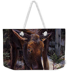 Weekender Tote Bag featuring the painting Young Moose And Pussy Willows Springtime In Alaska Wildlife Painting by Karen Whitworth