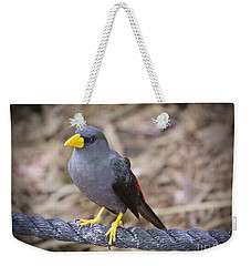 Young Myna Weekender Tote Bag by Judy Kay