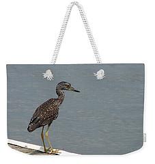 Young Night Heron Weekender Tote Bag