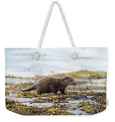 Young Otter Weekender Tote Bag