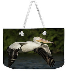 Young Pelican 2016-1 Weekender Tote Bag by Thomas Young