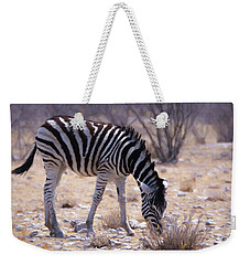 Weekender Tote Bag featuring the digital art Young Plains Zebra by Ernie Echols