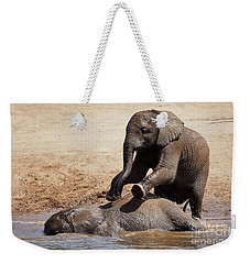 Young Playful African Elephants Weekender Tote Bag