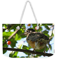 Weekender Tote Bag featuring the photograph Young Robin by Angie Rea