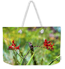 Young Rufous Hummingbird Perched On Flower Weekender Tote Bag