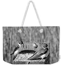 Young Tree Swallows Weekender Tote Bag