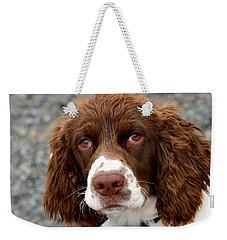 Young Water Spaniel Weekender Tote Bag