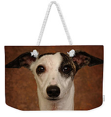 Weekender Tote Bag featuring the photograph Young Whippet by Greg Mimbs
