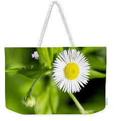 You're A Daisy If You Do Weekender Tote Bag by Pat Cook