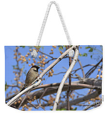 Yucca Valley House Sparrow  Weekender Tote Bag by Angela J Wright