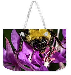 Weekender Tote Bag featuring the photograph Yummy Pollen by Darcy Michaelchuk