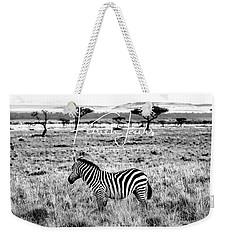 Zebra And Friend Weekender Tote Bag by Karen Lewis