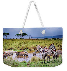 Weekender Tote Bag featuring the photograph Zebra At The Watering Hole by Janis Knight
