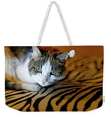 Zebra Cat Weekender Tote Bag