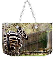 Zebra Weekender Tote Bag by Lana Trussell