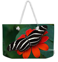 Zebra Longwing Butterfly Weekender Tote Bag by Kenneth Albin