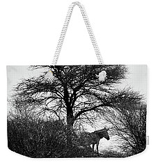 Weekender Tote Bag featuring the photograph Zebra On A Hill  by Ernie Echols
