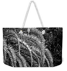 Weekender Tote Bag featuring the photograph Zebra Palm by DigiArt Diaries by Vicky B Fuller