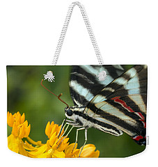 Zebra Swallowtail Drinking On The Fly Weekender Tote Bag