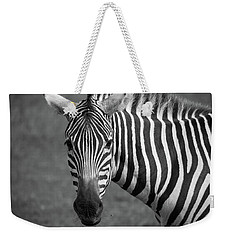 Zebra Weekender Tote Bag by Trace Kittrell