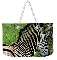 Zebra Walks Weekender Tote Bag